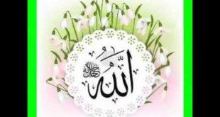 صورة اناشيد اسلامية روعة , نشيد دينى جديد