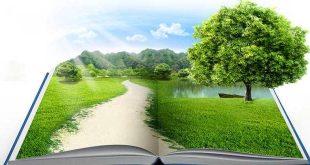 تعبير عن البيئة , اروع تعبير عن المحافظة عن البيئة