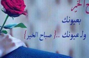 صورة صباح الورد حبيبي , اجمل صباح للحبيب