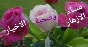 صورة صور مكتوب عليها مساء الخير , مساء الازهار وصحبة الاخيار 2024 9 310x165