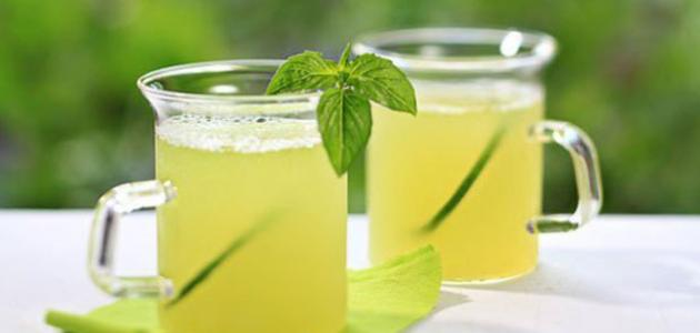 صورة فوائد عصير الليمون بالنعناع للرجيم , فوائد شرب عصير الليمون بالنعناع للرجيم