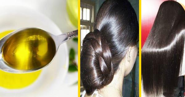 صور ما هي فوائد زيت الزيتون للشعر , استخدامات زيت الزيتون للعناية بالشعر