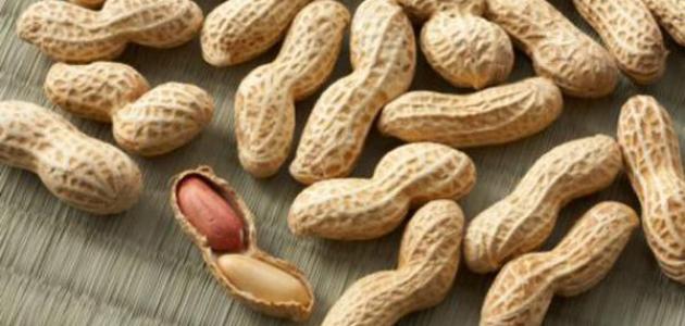 صور ما فائدة الفول السوداني , فوائد تناول الفول السوداني