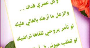صورة رسائل حب مصريه روشه , اجمل رسائل حب مصرية