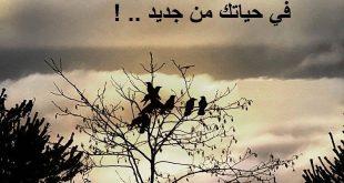 صور اشعار وخواطر قصيره , اجمل اشعار حزن قصير