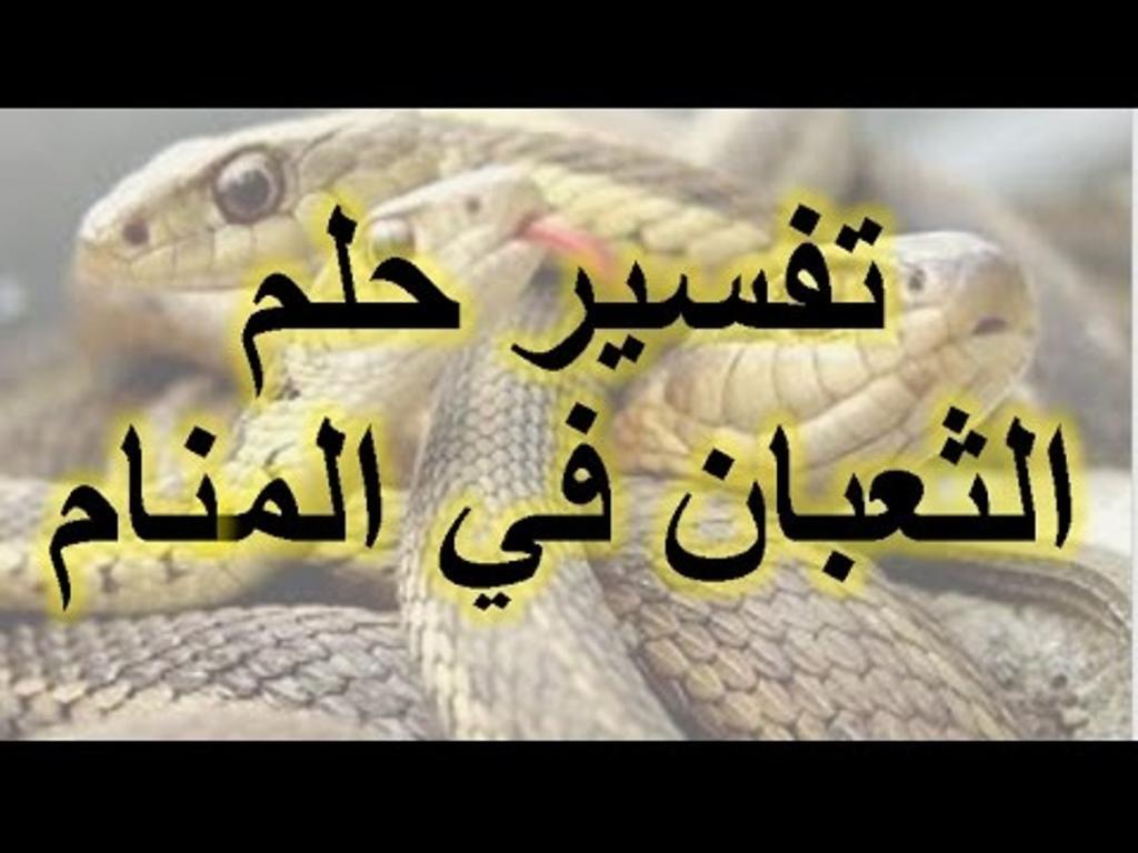 صورة رؤية الثعبان في المنام , الى ماذا يشير الثعبان في المنام