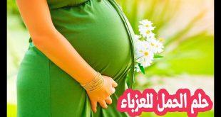 صورة تفسير حلم الحمل , على ماذا حلم الحمل