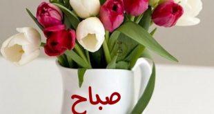 صورة احلى صور صباح الخير, صباح الحب والخير علي اغلي البشر