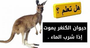 صورة هل تعلم عن الحيوانات, من اهم المعلومات التي تعرف عن الحيوانات