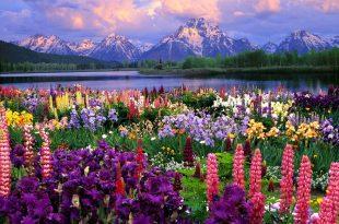 صورة احلى مناظر في العالم، اكثر المشاهد الطبيعية جمالا