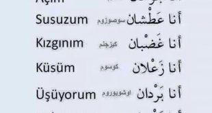 صورة طريقه التركوه في الكلام , عبارات جميلة بالتركي 7251 1 310x165